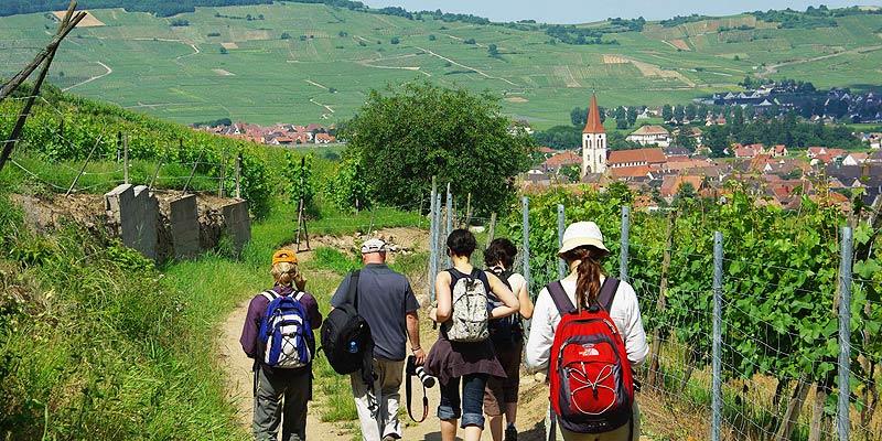 Walking in Alsace, France
